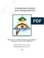 Procedimientos Para Atender Tortugas Marinas