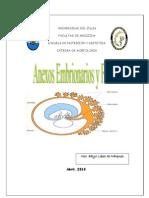 Anexos Embrionarios y Fetales 2010