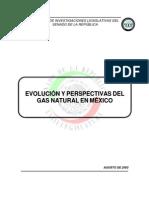 Evolucion Gas Natural