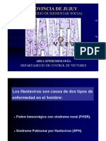 Hantavirus-Epidemiologia