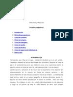 ciclobiogeoquímico