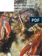 Dmf Recreational Lobster Crab Guide
