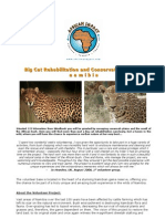 African Impact Brochure NAM BIGC CON