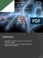 Hipotesis_2