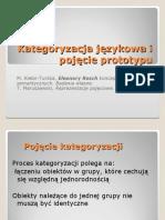 Kategoryzacja językowa i pojęcie prototypu