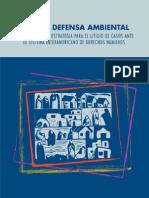 Casos Ambientales y DESC Ante CIDH 2008