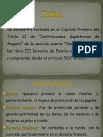 Diapositivas Tutela