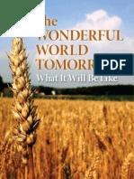 Wonderful  World Tomorrow