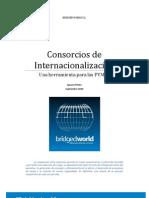 Consorcios de Internacionalizacion Format