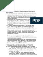 Bernardo Coster Zacarias 1 3