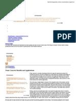 Foam Concrete Benefits and Applications | Cheap Patio Ideas