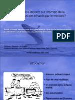Impact du mercure sur les cétacés, présentation
