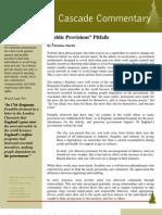 """Public Provisions"" Pitfalls By Christina Martin"
