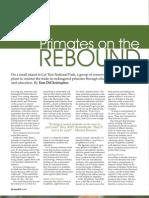 Primates on the Rebound