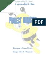 Proiect tie Gr 1- Modificat-2 (1)