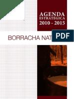 Agenda Estrategica Borracha