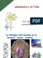 termodinamica bioenergetica ciencias 2008