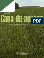 guia_cana