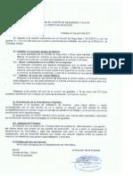 ion Para El Comite de Seguridad y Salud y El Comite de Igualdad