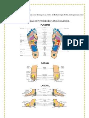 Mapa Reflexologia Podal Pdf.Mapa Reflexologia