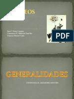 OPIOIDES SEMINARIO
