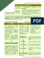 Piaget. desenvolvimento