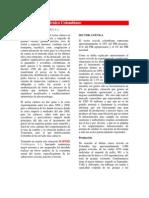 Informe Sector Carnico Julio 2010