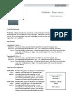 Curriculum Vitae Modelo1c Oscuro
