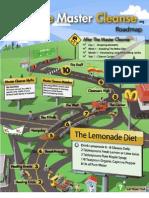 Master Cleanse Roadmap Report