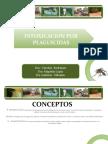 presentacion insecticidas