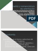 Planimetría y nomenclatura de orientación