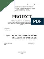 Cocktail Proiect 11A Final 1