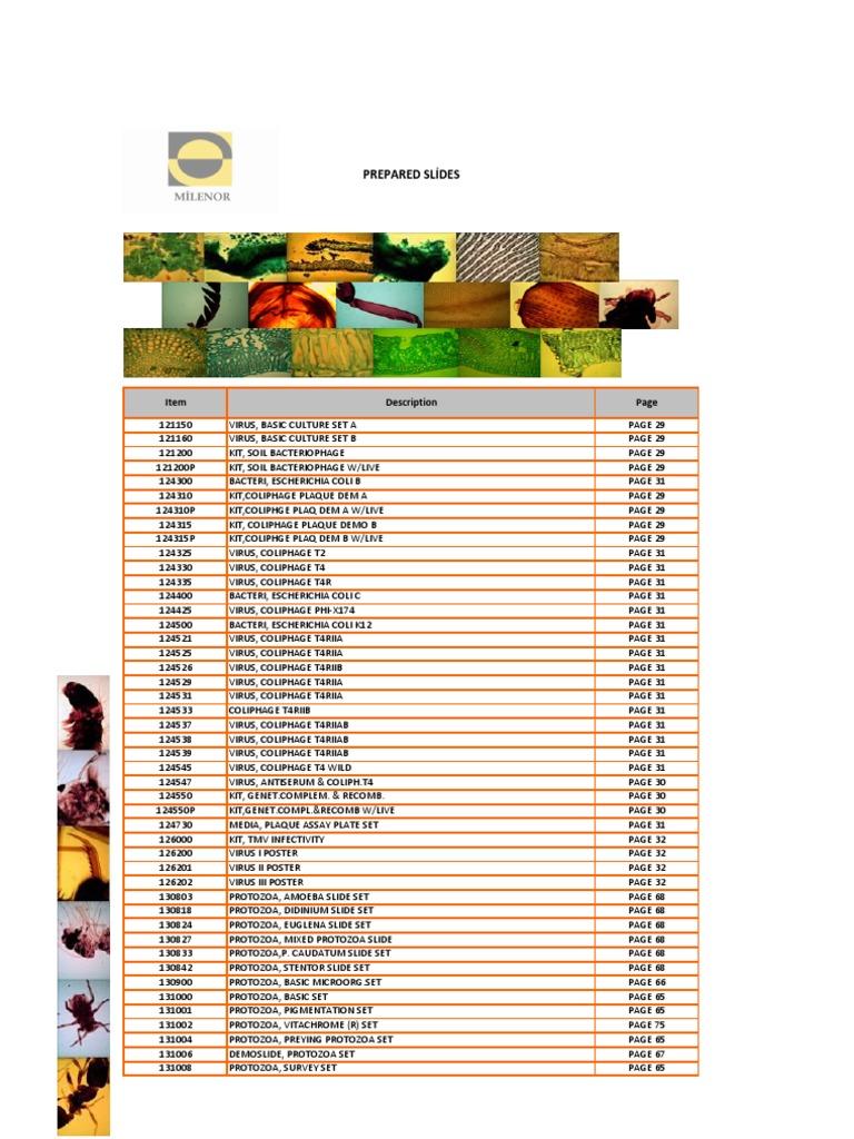50 cut//folded FRAGILE HATCHING EGGS HANDLE//CARE NO X-RAY 2x3 label fluor orange