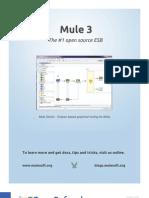 rc140-010d-mule3_2