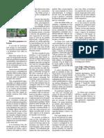 Artigo_capa purqueriobayleaf