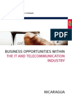 Business Opportunities Within the It Industry