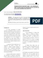 ARTIGO - MAPEAMENTO GEOMORFOLÓGICO DE DETALHE