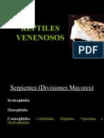Reptiles Venenosos