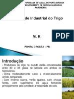 Qualidade Industrial Do Trigo