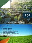 Produção, situação mundial, nacional, estadual e regional – variações de preços nos últimos anos e perspectivas imediatas e futuras – biodiesel - Cópia