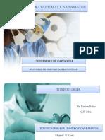 presentacion cianuro(2)