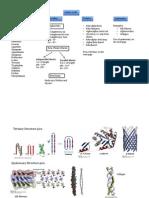 Flow Chart Review Sheet