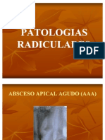 Patologias Radiculares