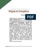 Certificado Brigada 2011 Bruno