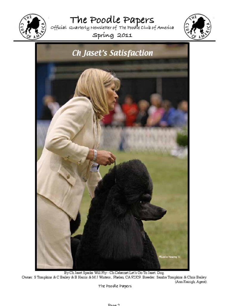 Poodle Papers Spring 2011 | Poodle | American Kennel Club
