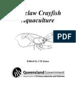 Redclaw Crayfish Aquaculture