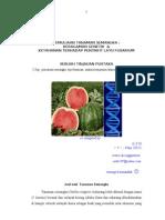 Pemuliaan Tanaman Semangka untuk ketahanan terhadap penyakit layu fusarium