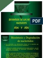 BIOSINTESIS_AC.NUCLEICOS