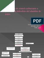 Proyecto Almidon de Papa[1]