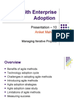 Issues with Enterprise Adoption of Agile Technology